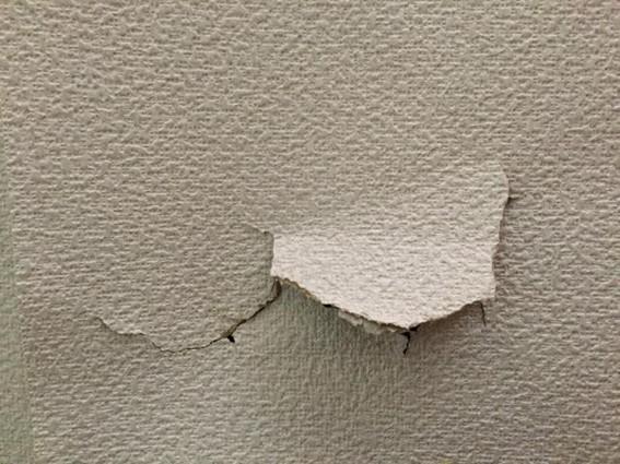 壁の穴を放置できない理由